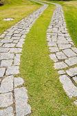 Kıvrımlı kaldırım taşı döşeli yol — Stok fotoğraf