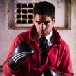 Fighter with boxing gloves - Foto de Stock