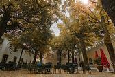 Hermoso parque al aire libre — Foto de Stock
