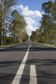 Long asphalt road — Stock Photo