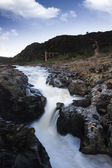 River landscape in the Alentejo region — Stock Photo