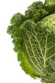 Fresh savoy cabbage — Stock Photo