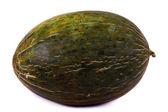 Rock melon — Stock Photo