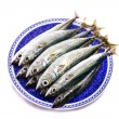 Atlantic mackerel — Stock Photo #25131931
