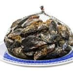 Blue mussel bivalve — Stock Photo #25132101