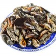 Blue mussel bivalve — Stock Photo