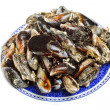 Blue mussel bivalve — Stock Photo #25132127