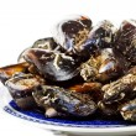 Blue mussel bivalve — Stock Photo #25132135