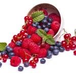 Tasty mix of berries — Stock Photo #25145153