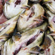 Monkfish at market — Stock Photo