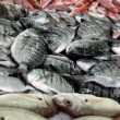 Bream pile — Stock Photo