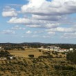 Alentejo landscape — Stock Photo