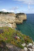 Natural coastline of Algarve — Stock Photo