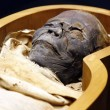 Stock Photo: Open casket of Egyptimummy