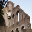 Palatino ruins in Rome, Italy — Stock Photo