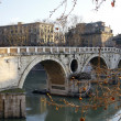 Stock Photo: River Tiber in Rome, Italy