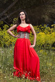 Young woman in a red dress — Stock Photo