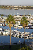 View of the marina — Stock Photo
