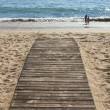 Wood board walk — Stockfoto