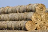View of a stack of hay bales — Stock Photo