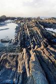 View of the beautiful coastline — Stock Photo