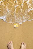 Beach shoreline — Stock Photo