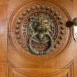Doorknob in the shape of a lion head — Stock Photo #36070225