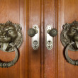 Stock Photo: Doorknob in the shape of a lion head
