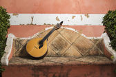 Traditional Portuguese guitar — Stock Photo