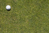 Golf ball on a corner in a green grass — Stockfoto