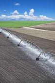 поле фермы с системой орошения — Стоковое фото
