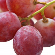 Bunch of red grapes on white — Stock Photo