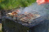 Chicken fried on the grill with smoke — Stock Photo