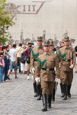 Guard at the Presidential palace in Budapest, Hungary. — Stock fotografie