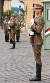 Guard at the Presidential palace in Budapest, Hungary. — Stock Photo