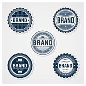 Awesome Badges Template — Stock Vector