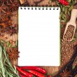 Open notebook with spices and herbs — Stock Photo