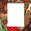 Open notebook with spices and herbs — Stock Photo #12537668