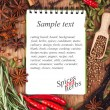 Stock Photo: Open notebook with spices and herbs