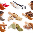 Stock Photo: Spices and herbs isolated on white