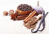 Still life with spices on fabric background — Stock Photo