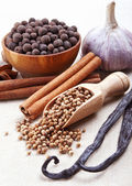 Still life with spices on textile background — Stock Photo