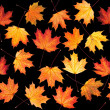 Seamless texture with maple leaves — Stock Photo