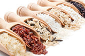 Wooden scoops with different rice types scattered from them — Stock Photo