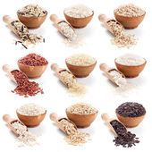 Rice collection isolated on whte — Stock Photo