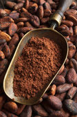 Cocoa beans and retro scoop with cocoa powder — Stock Photo