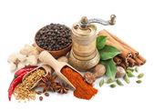 Composizione con diverse spezie ed erbe aromatiche isolati — Foto Stock