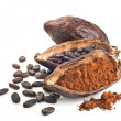 Stock fotografie: Cocopod, beans and powder isolated on white