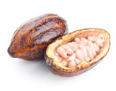 Raw cocoa pod and beans isolated on a white — Stock Photo
