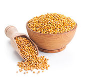 White mustard seeds isolated on white — Stock Photo